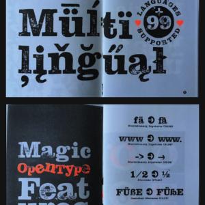 Type Specimen_Hand Stamp Slab Serif Rough_Riso Print_Cover